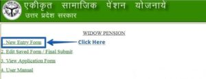 uttar pardesh vidwa pension yojana online 3
